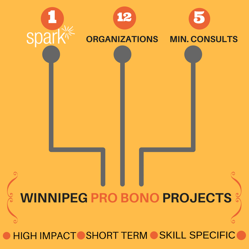 One Spark, 12 Organizations, 5 minute assessments equals pro bono matches
