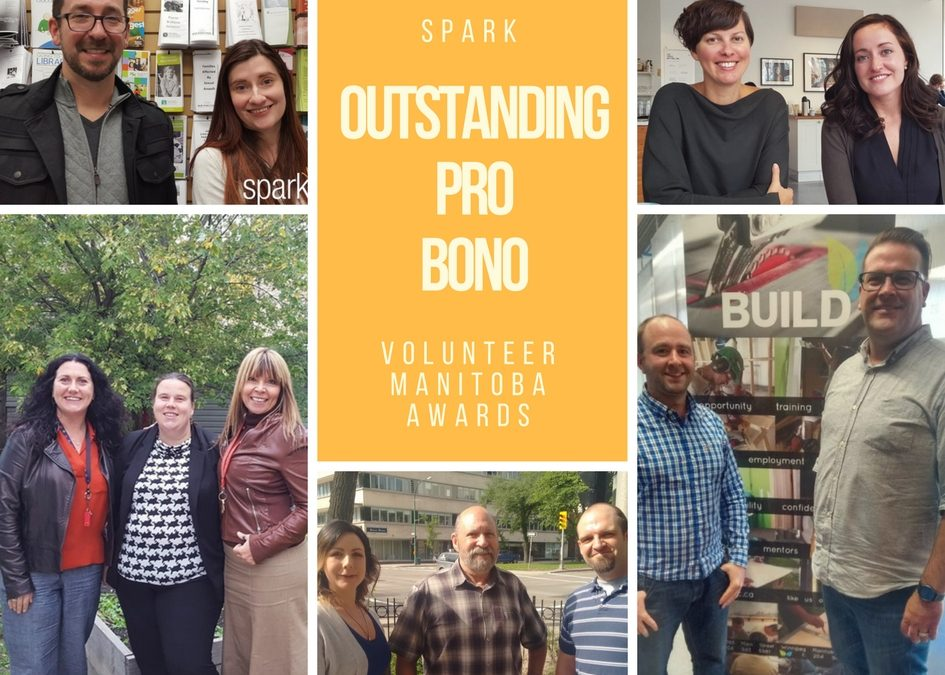 Spark Outstanding Pro Bono Awards-list of nominees